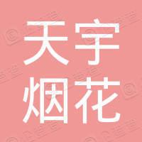南部县天宇烟花爆竹有限公司第三十五号门市部