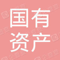 蓬安县国有资产经营公司
