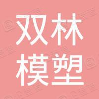 安徽双林模塑科技有限公司