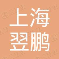 上海翌鹏信息科技有限公司