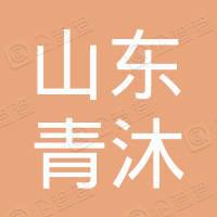 山东青沐新能源科技有限公司