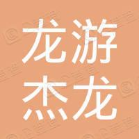 浙江龙游杰龙电子科技有限公司