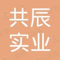 深圳市共辰实业有限公司