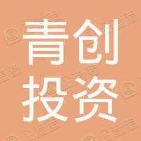 广西青创投资集团有限公司
