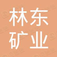 贵州林东矿业集团有限责任公司