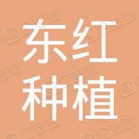 长阳东红种植专业合作社