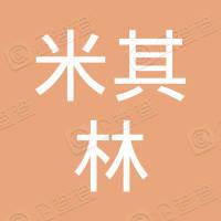 桂阳县米其林轮胎专卖店