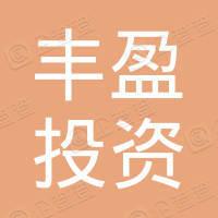 广州丰盈投资咨询有限公司
