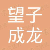 晋江市磁灶望子成龙文化艺术培训学校有限公司