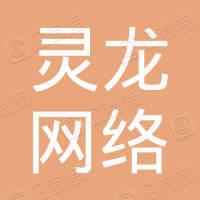 嘉兴灵龙网络科技有限公司