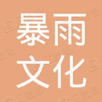 海南暴雨文化传媒有限公司