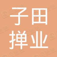 太和县郭庙镇子田掸业专卖店