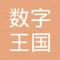 北京数字王国科技有限公司
