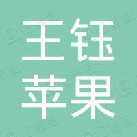 依兰县王钰苹果手机维修分店