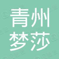 青州梦莎新能源有限公司