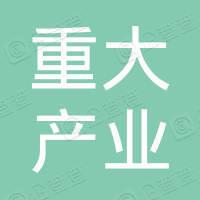 深圳市重大产业投资集团有限公司