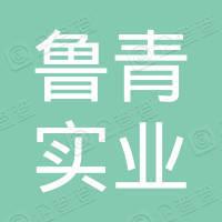 青岛鲁青实业集团有限公司