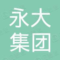 福建永大集团有限公司