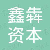 山东鑫犇资本控股有限公司
