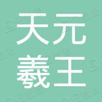 深圳天元羲王材料科技有限公司