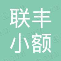 武汉市联丰小额贷款股份有限公司
