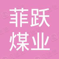 天津菲跃煤业有限公司