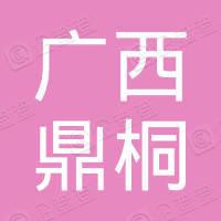 广西鼎桐网络科技有限公司