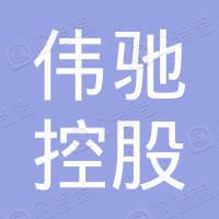 伟驰控股集团有限公司