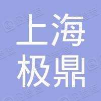 上海岱鼎自动化设备有限公司