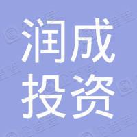 江西润成投资有限公司