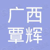 广西覃辉电子科技有限公司