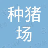 海南省种猪场