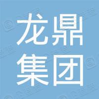 龙鼎集团股份有限公司