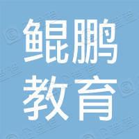西安鲲鹏教育科技集团有限公司