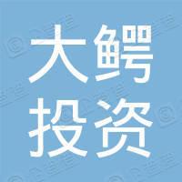 深圳市大鳄投资有限公司