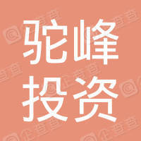 天津驼峰投资集团有限公司