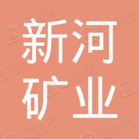 山东新河矿业有限公司