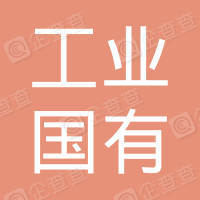 武汉工业国有投资有限公司