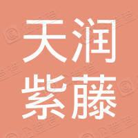 北京天润紫藤商贸有限公司