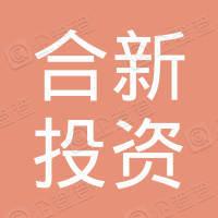 上海合新投资发展有限公司
