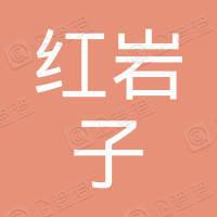 四川省南部红岩子电力有限责任公司