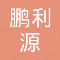 深圳市鹏利源实业投资有限公司
