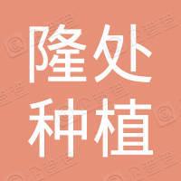 砚山县隆处种植农民专业合作社