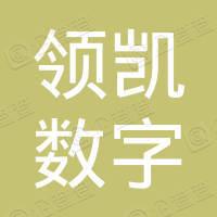 江苏领凯网络传媒有限公司