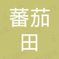 蕃茄田艺术(北京)有限公司