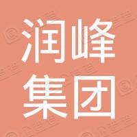 山东润峰集团有限公司
