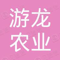 重庆市游龙农业开发有限公司