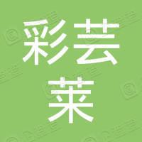重庆彩芸莱网络技术服务有限公司