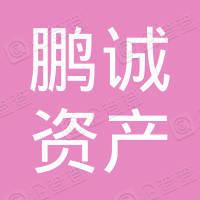 鹏诚资产托管(深圳)有限公司