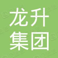 龍昇集團控股有限公司